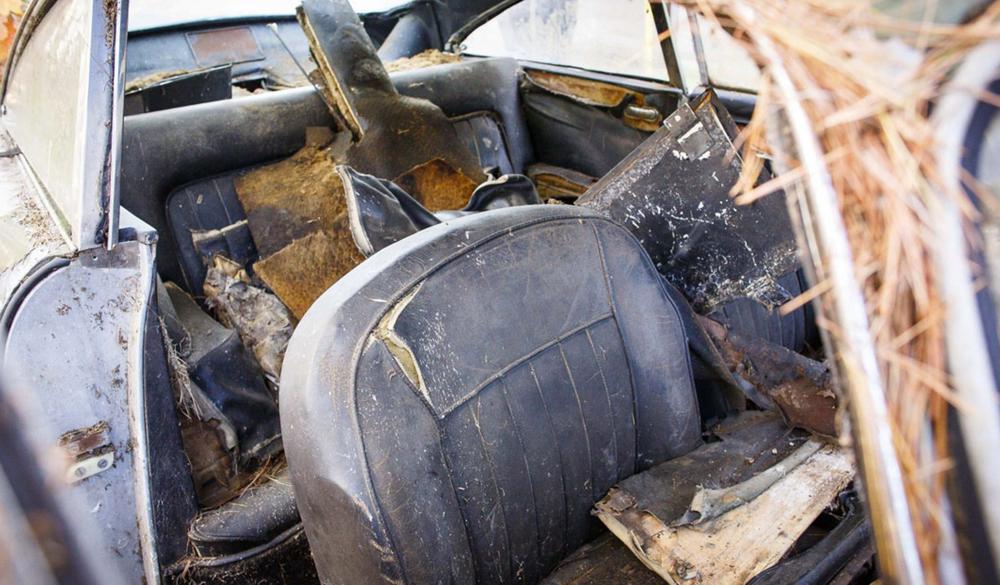 Заброшенное сокровище – редкое купе Aston Martin DB4 найдено в лесу
