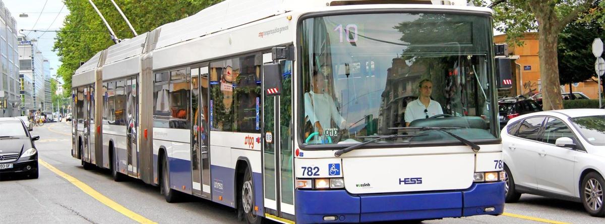 транспорт онлайн - DozoR City