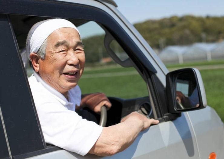 японцы арендую автомобили но не ездят на них